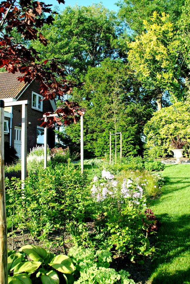 Natuurlijke tuin in Zuid-Beijerland - Tuinontwerp en tuinaanleg hoveniersbedrijf Van der Waal Tuinen