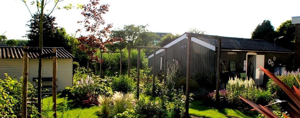 Tuinaanleg natuurlijke tuin Zuid-Beijerland Van der Waal Tuinen Hoveniersbedrijf