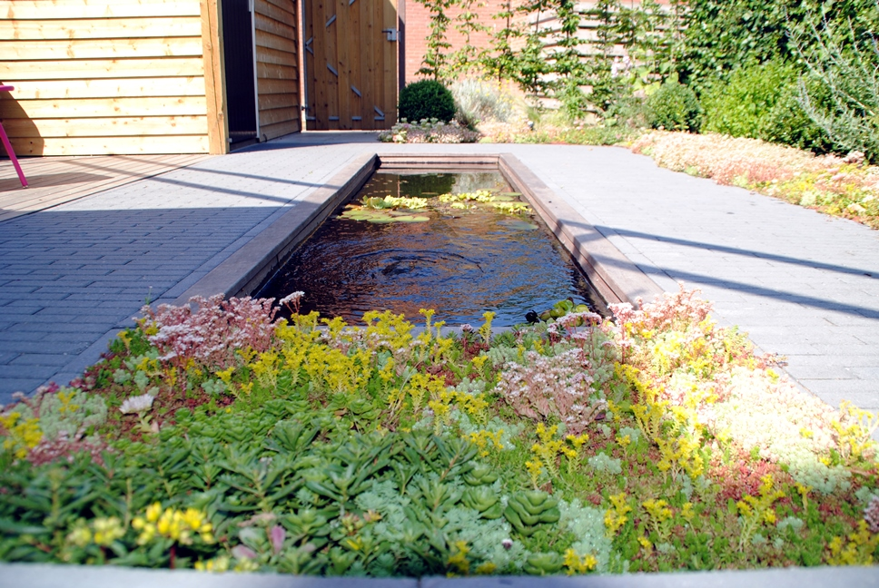 Tuinaanleg designtuin achtertuin Van der Waal Tuinen hovenier Hoeksche Waard
